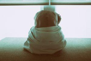 clovek s bolestou chrbta v oblasti krizov